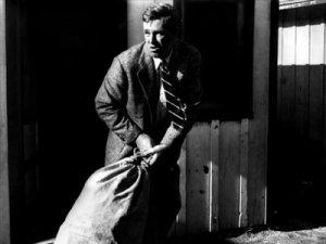 The Killing [1956]
