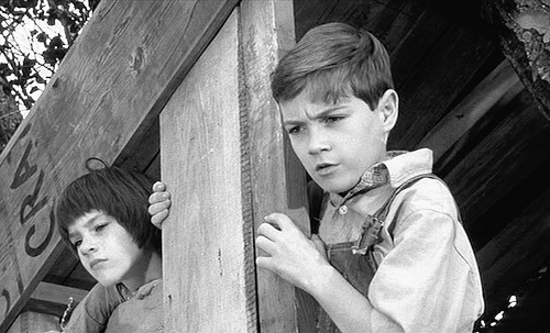 examples of scout finch s innocence To kill a mockingbird innocence of scout harper lee's book to kill a mockingbird is significant because it gives many examples of the effect of scout finch.