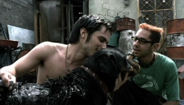 Amores Perros [2000]