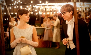 The Theory of Everything [2014]